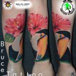 bruce 13 kar alkar arm colour forearm szines color tukan bird ink man tattoo studio budapest tetovalas bruce - Tetoválás, Ink man tattoo studio, Tetoválás Budapest, piercing