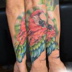 papagáj tetoválás, parrot tattoo