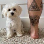 fehér kutya kedvenc tetoválás, white dog favourite tattoo