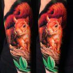 real mókus vörös tetoválás, real squirrel red tattoo